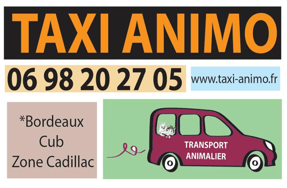 Logo-Taxi Animo bordeaux caudillac